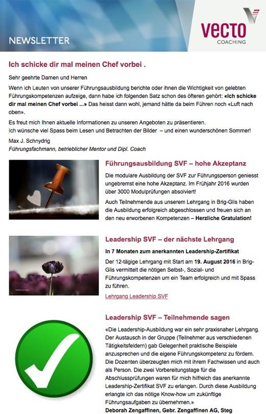 Referenz Newsletter Vorlage, indual GmbH, Webentwicklung und Hosting, Brig